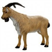 3D-Tiere
