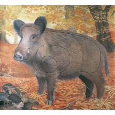 JVD Wildschwein